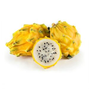 Yellow Dragon Fruit Plant